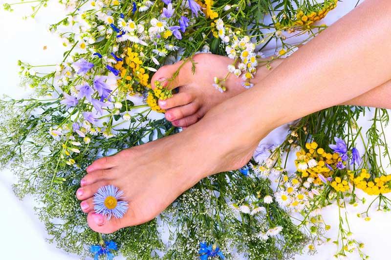 Как лечить ноги при помощи трав