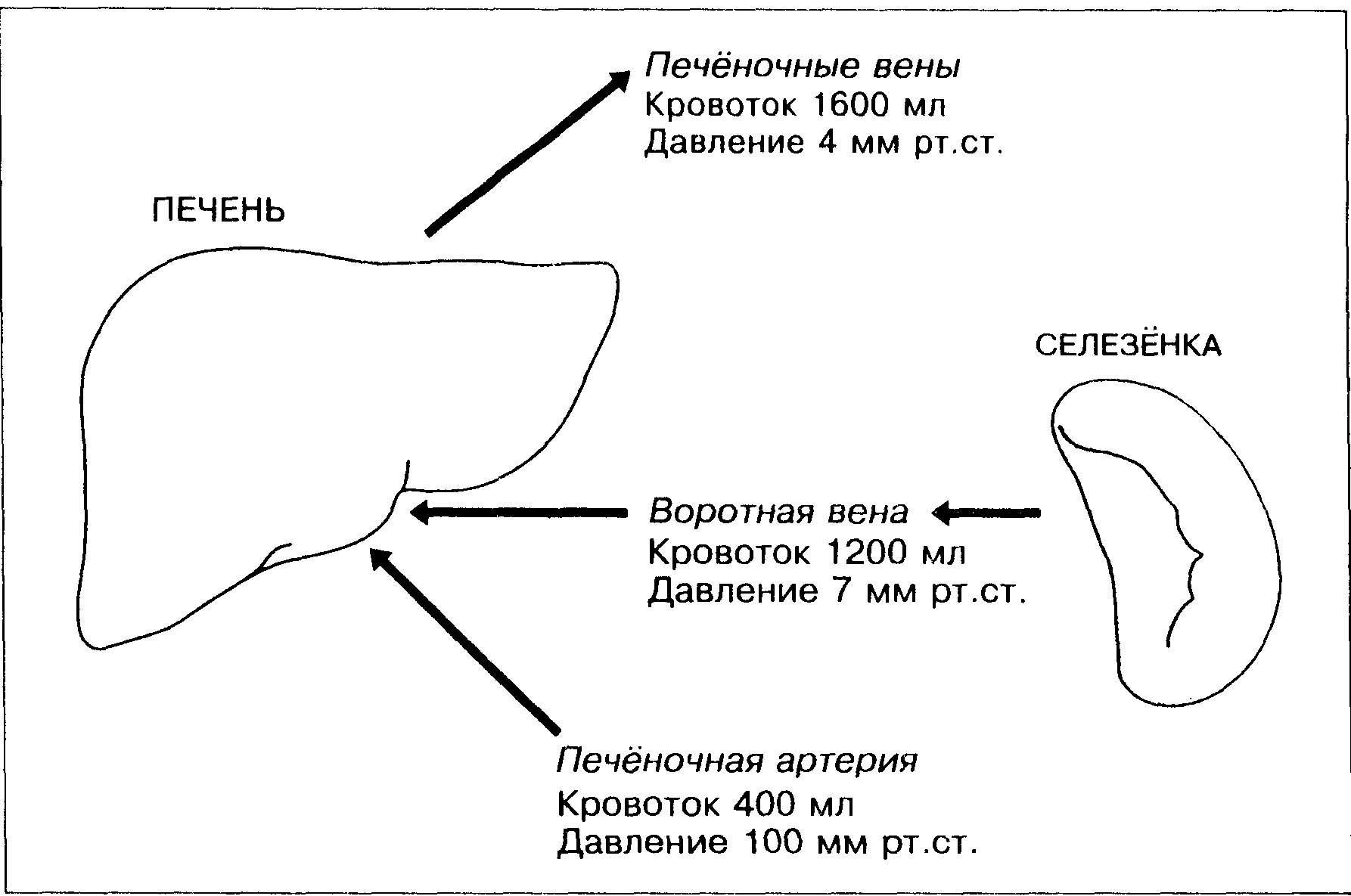 мкб 10 тромбоз мезентериальных сосудов