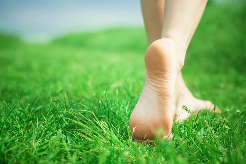 Трофическая язва на ноге при сахарном диабете