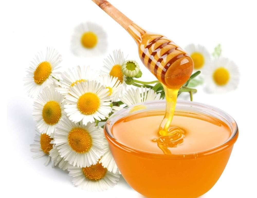 Мед от варикозного расширения вен