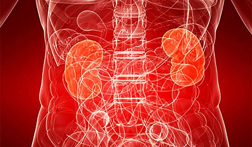 Лечение атеросклероза сосудов почек