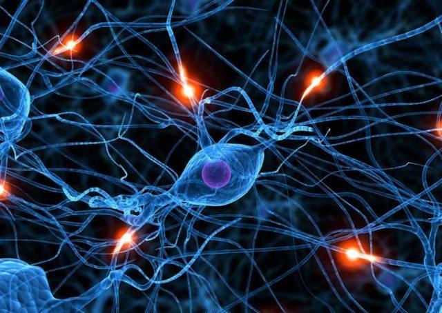 Отсутствие лечения закончится необратимыми изменениями в мозге