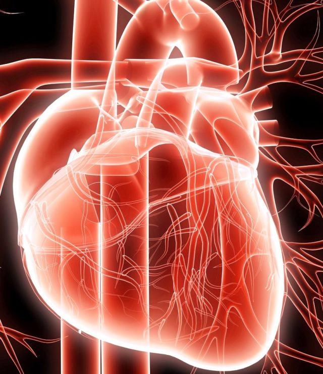 Как правило, возникает дыхательная аритмия у детей или подростков, совсем молодых и незрелых людей