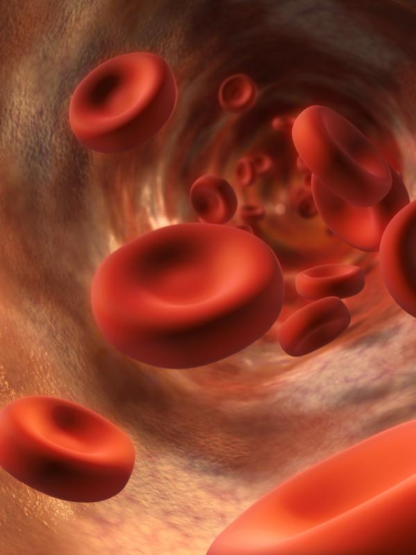 Increased hemoglobin f in adults