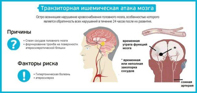 Системный атеросклероз охватывает, в том числе и церебральные сосуды, как внутримозговые, так и экстрацеребральные