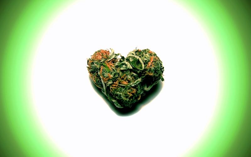 Травы для здорового сердца
