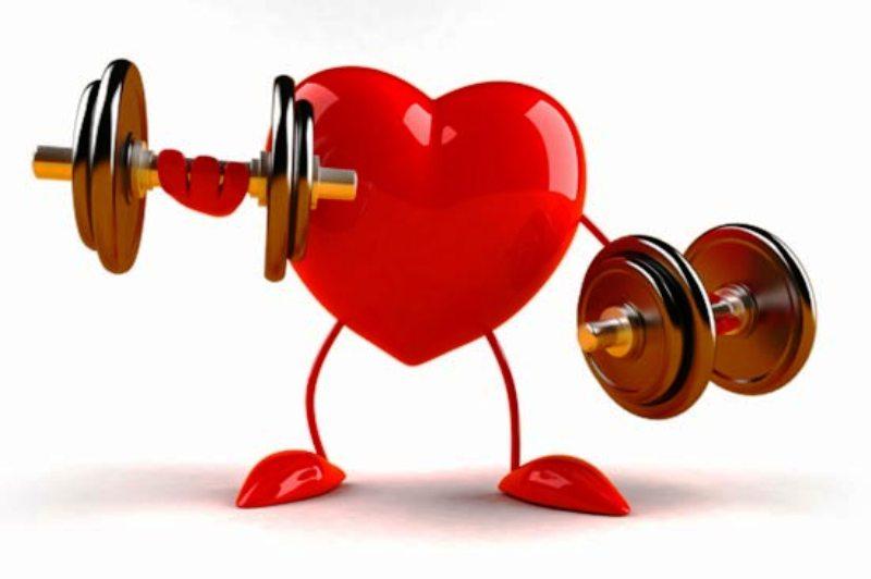 Здоровое сердце спортсменов