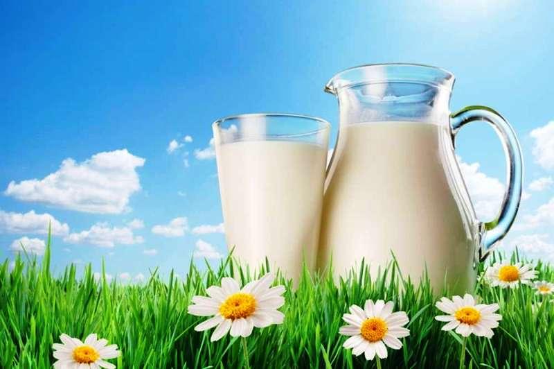 Молоко полезно для гипертоников