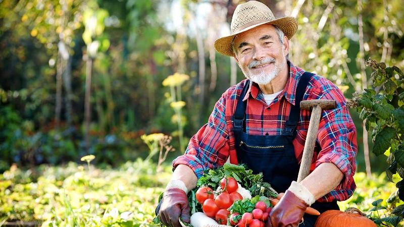 Садовая работа