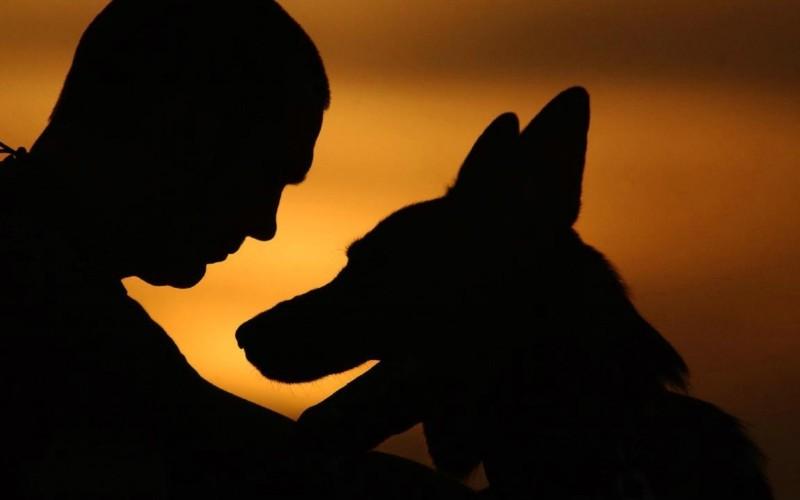 Мужчина и любимая собака