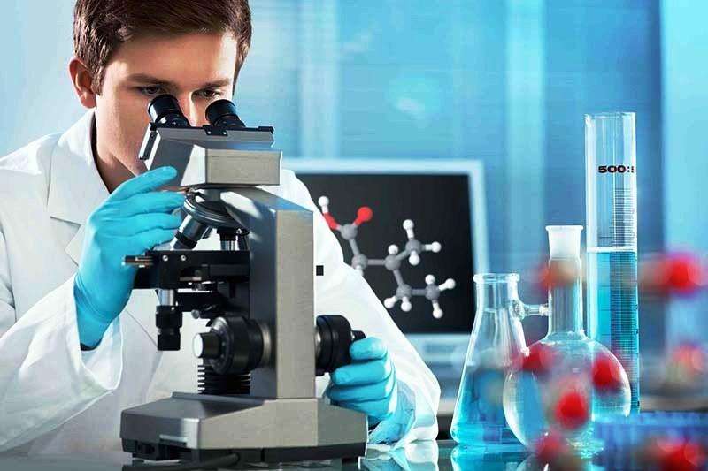 Анализ ДНК