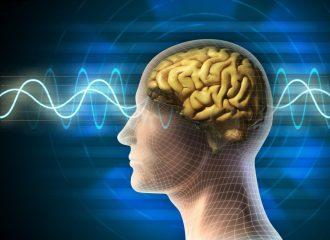 Ишемический инфаркт головного мозга