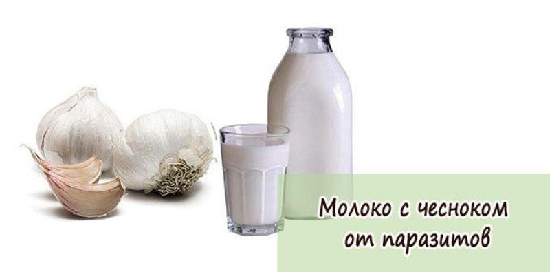 Настойка на молоке