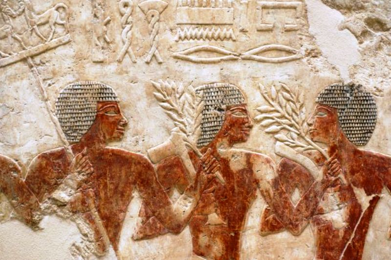 Чеснок входил в диету фараонов