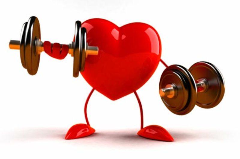 Спортивное сердце