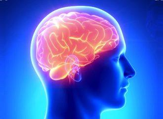 Лакунарный инфаркт головного мозга