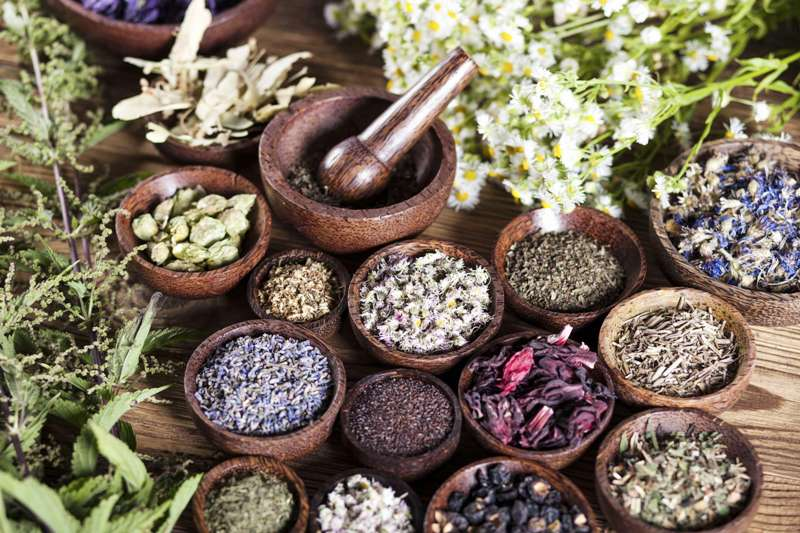 Травы для лечения ВСД