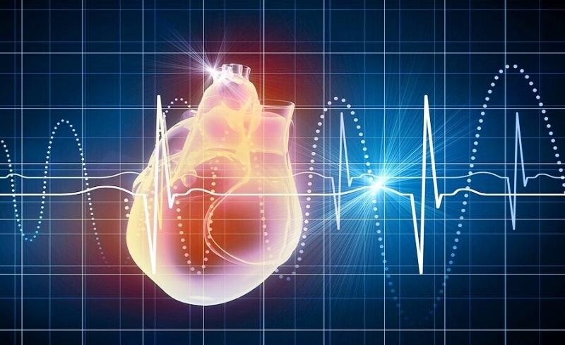 Повышены сердечный ритм
